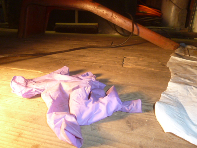 PurpleGloves.JPG